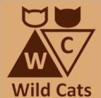 Wild Cats / Tiger / Вайлд Кэтс / Тайгер
